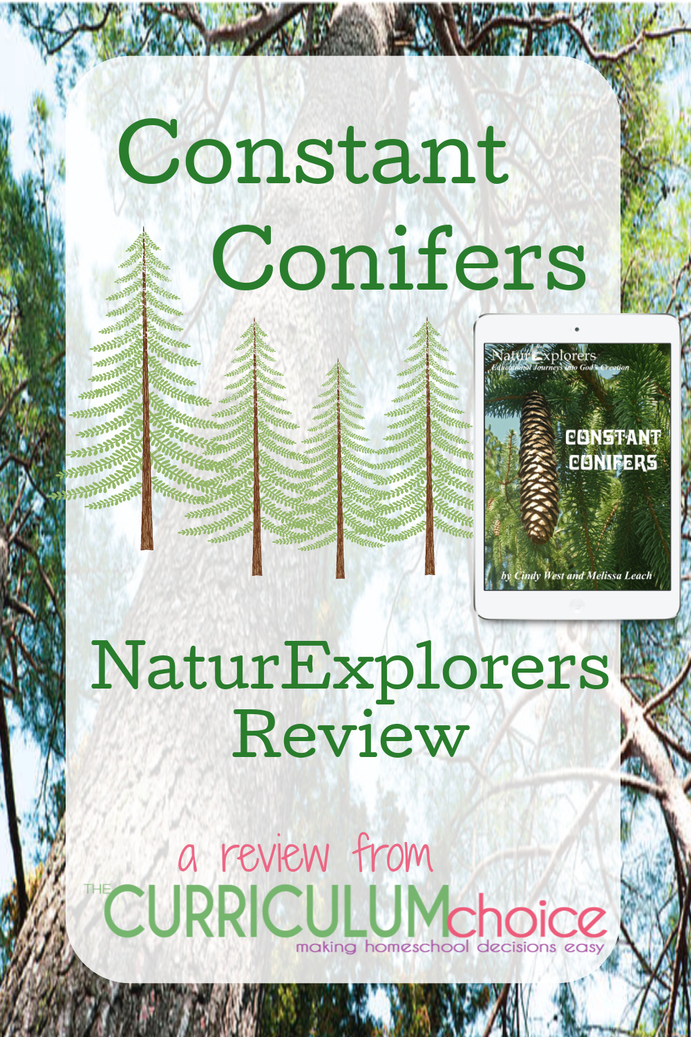 NaturExplorers Constant Conifers - 30+ nature walks; learn about all parts of conifers including cones, leaves, branches, sap and more