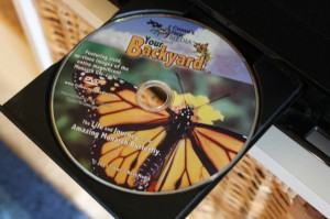 Your Backyard DVD: The Life and Journey of the Amazing Monarch Butterfly Review + Giveaway!