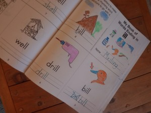 Early Reading – Word Families – Reading Success Mini Books