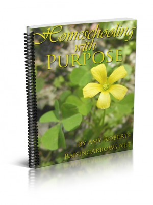 Homeschooling with Purpose Offers Solid Encouragement to Mothers