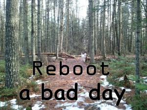 Reboot a Bad Day