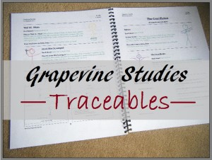 New Grapevine Traceable Studies for children age 3-5