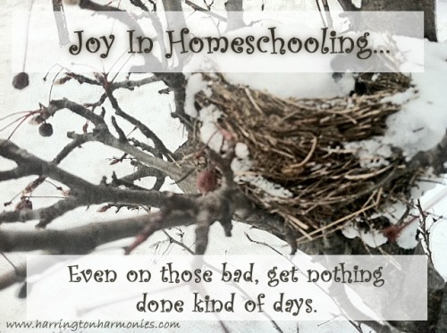 Joy in Homeschooling copy