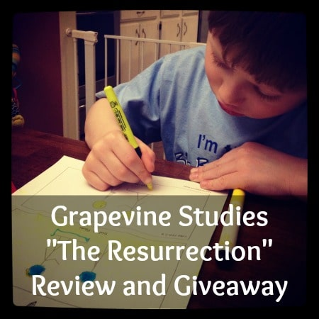 "Grapevine Studies ""The Resurrection"" Review and Giveaway"