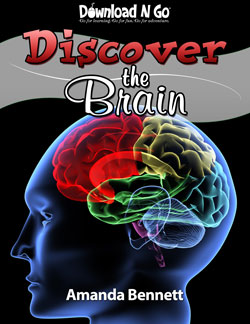 DiscoverTheBrainCoverSM