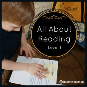 Review: All About Reading - Level 1 at The Curriculum Choice