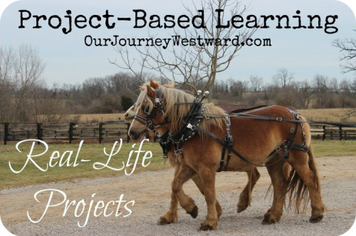Project-based learning and more for middle school @Cindy West (Our Journey Westward)