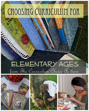 Here you will find an amazing list of resources from our wonderful authors – with a sampling of informative reviews to help you as you choose your elementary homeschool curriculum!