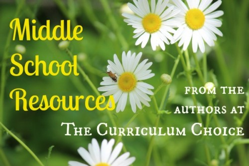 The Curriculum Choice authors share some of their favorite resources to encourage you as you homeschool middle school. Reviews, helps and more.