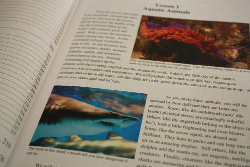 Apologia Swimming Creatures review www.thecurriculumchoice.com