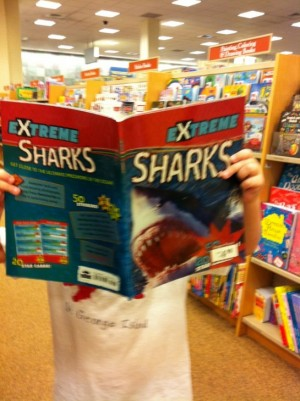 Extreme Sharks book