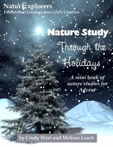 Christmas Nature Study