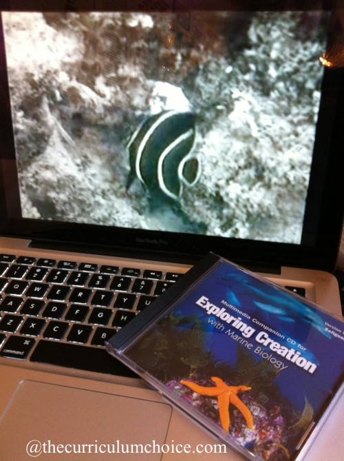 Marine Biology Multimedia Companion CD www.thecurriculumchoice.com