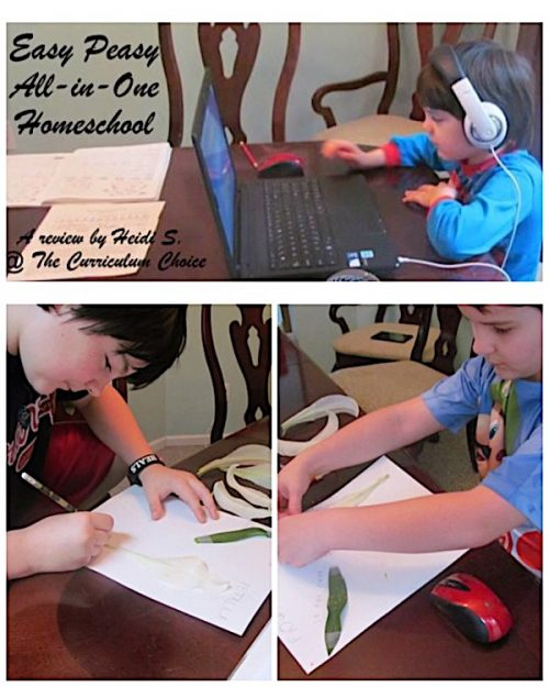 Yes it's FREE! Easy Peasy All-in-One Homeschool Review by Heidi S at The Curriculum Choice