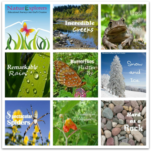 Science and Nature Study curriculum from the authors of Curriculum Choice (NaturExplorers by Shining Dawn Books)