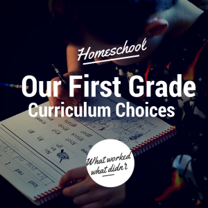 Our First Grade Curriculum Choices - A Journey of Purpose