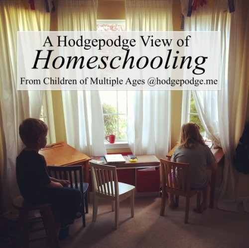 A-Hodgepodge-View-of-Homeschooling-From-Multiple-Ages-www.hodgepodge.me_-580x580