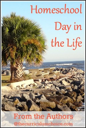Homeschool Day in the Life - The Curriculum Choice