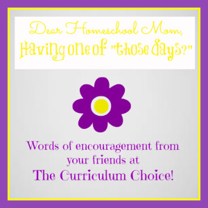 Homeschool Encouragement from The Curriculum Choice