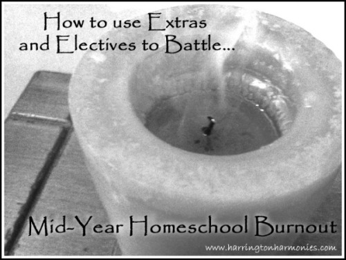 Battle homeschool Boredom with extras and electives.