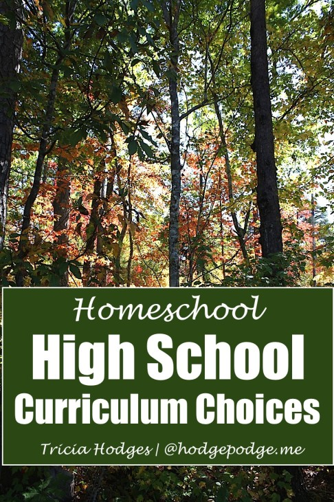 High-School-Curriculum-Choices-at-Hodgepodge-486x730