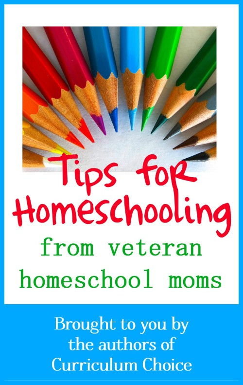Our team of veteran homeschoolers at The Curriculum Choice is sharing some of their best, well-seasoned, favorite homeschool tips for you today. You will be blessed.