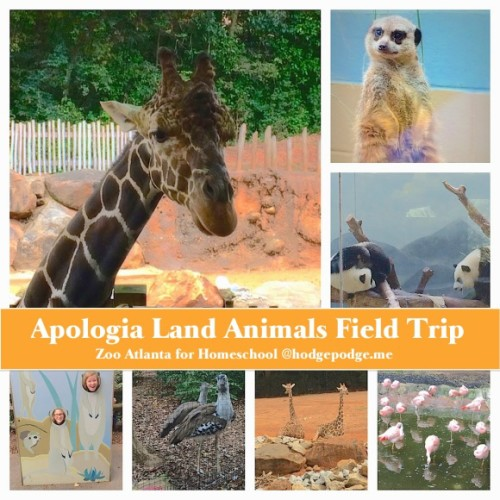 Apologia-Land-Animals-Zoo-Field-Trip-580x580