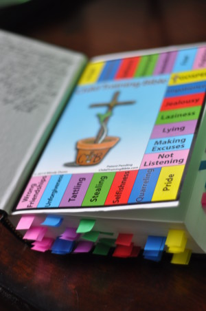 The Child Training Bible