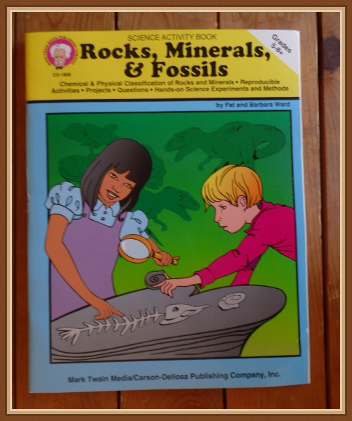 Middle School STEM Activity Books - Rocks, Minerals, & Fossils - My Review