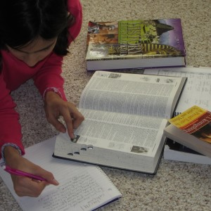 A Plan in Place Homeschool Planners