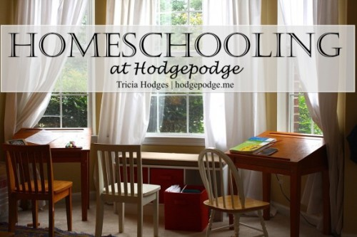 Homeschooling-at-Hodgepodge-www.hodgepodge.me_-580x386