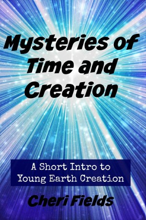 Mysteries of Time and Creation Review by Annie Kate at The Curriculum Choice