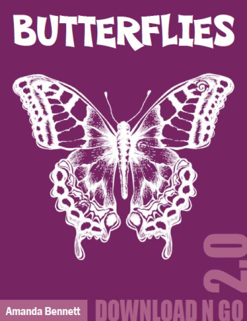 Butterflies by AmandaBennett.com