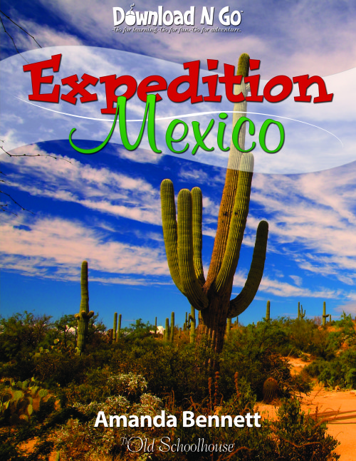 Expedition Mexico by AmandaBennett.com