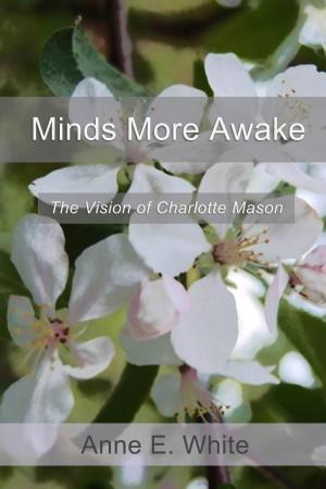 MindsMoreAwakeCover (large)