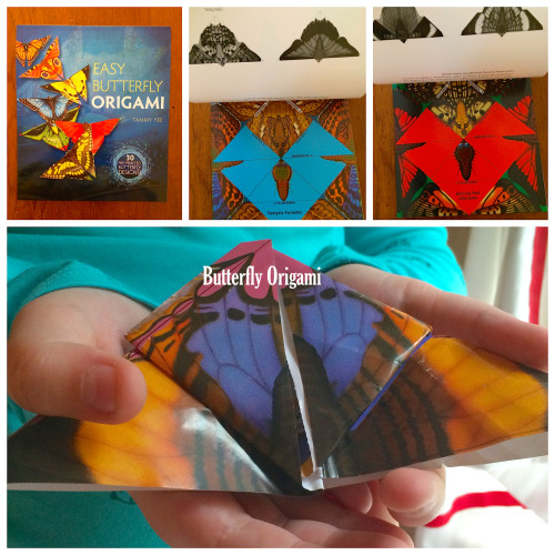 Easy Butterfly Origami from Dover Publications