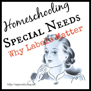 Learning Challenges and Special Needs Homeschooling