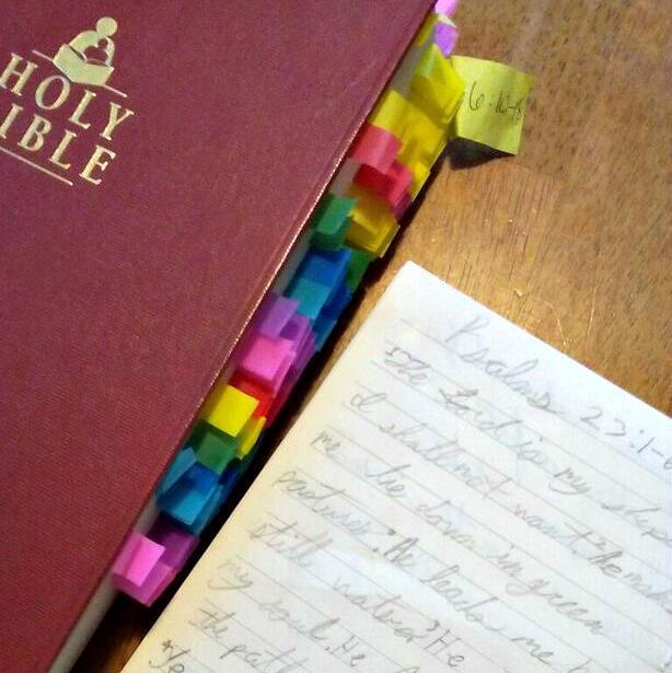 using virtue training bible