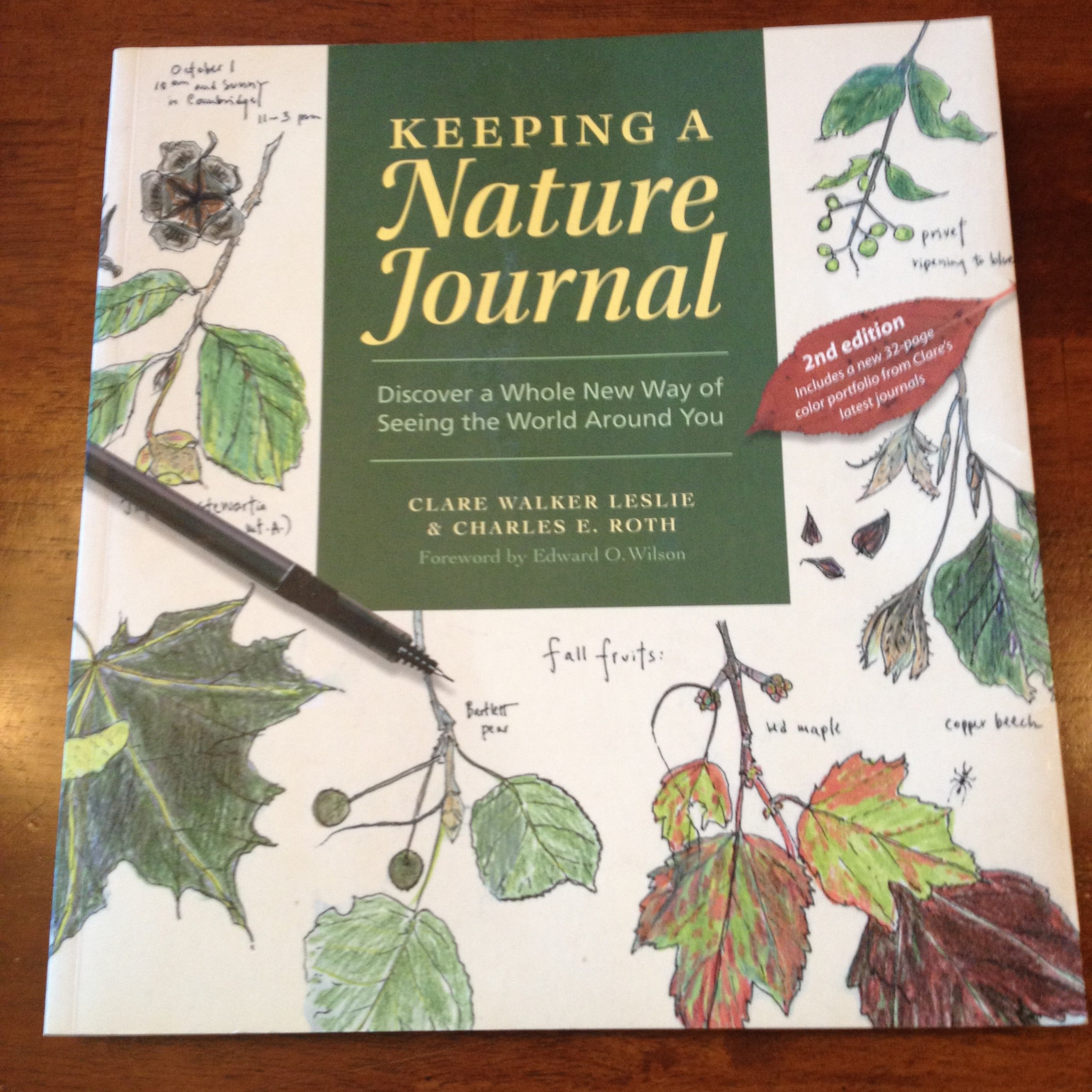 nature journal keeping thecurriculumchoice
