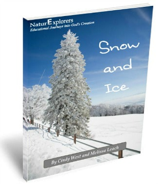 Snow and Ice Nature Study Review