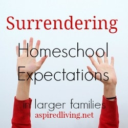 Surrendering Homeschool Expectation