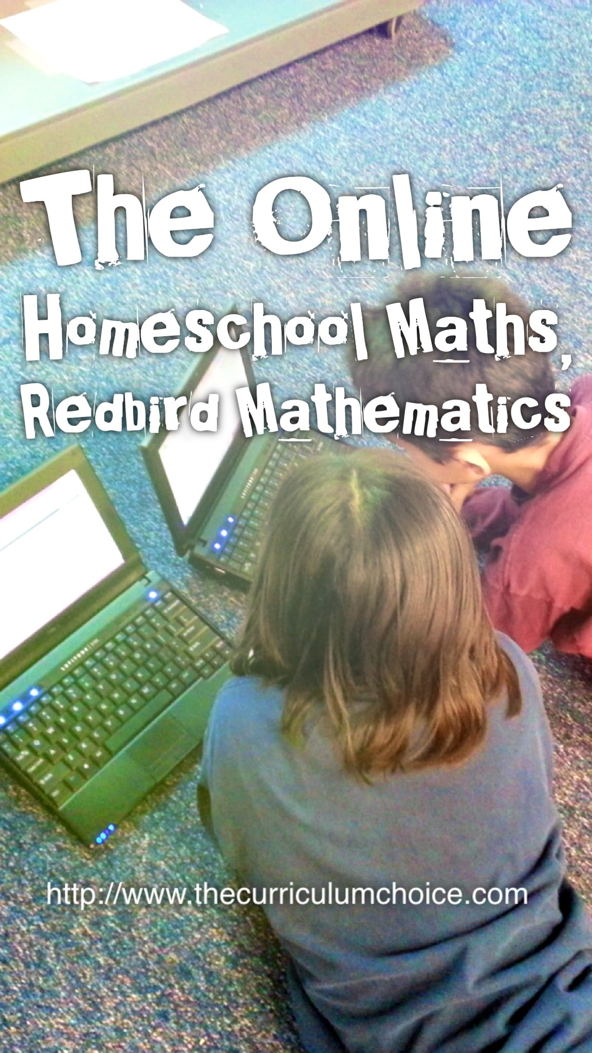 The Online Homeschool Maths, Redbird Mathematics