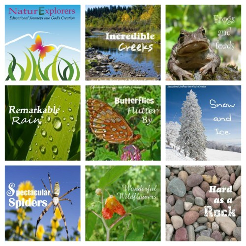 NaturExplorers are a great option for no-hassle nature study lessons.