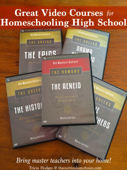 Great Video Courses for Homeschool - Bring Master Teachers into Your Home!