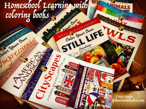 Homeschool Learning with Coloring Books from Dover Publications