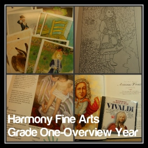 Harmony Fine Arts Grade 1 300 by 300