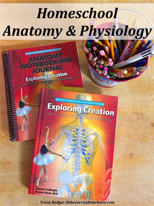 Homeschool Anatomy and Physiology Review