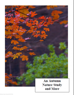 An Autumn Round Up of Resources from Curr Click