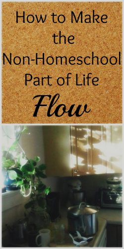 How to Make the Non-Homeschool Part of Life Flow