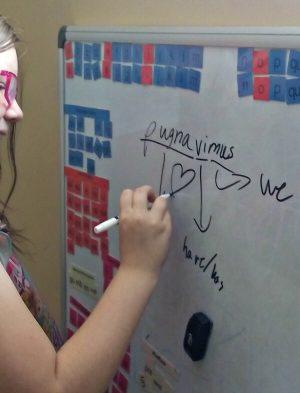 student-diagramming